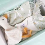 Geboorte cadeau little goose