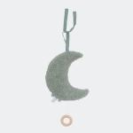 Muziekhanger maan