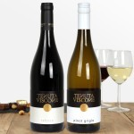 Tenuta Viscone Refosco & Pinot Grigio